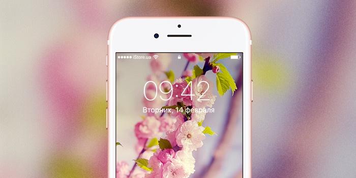 17 мгновений весны: цветочные обои для вашего iPhone
