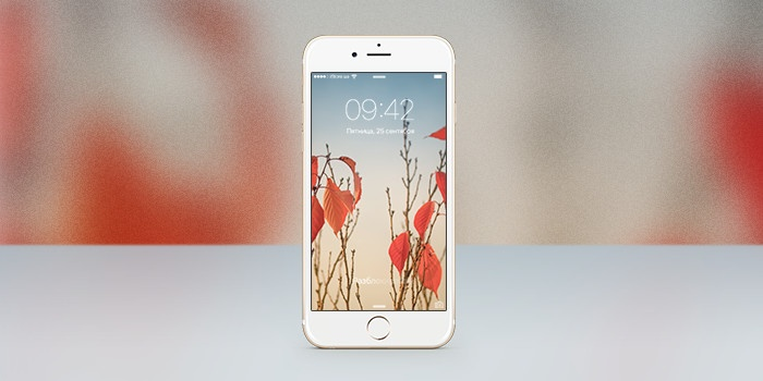 Обои для iPhone: осенняя пора очей очарованье…